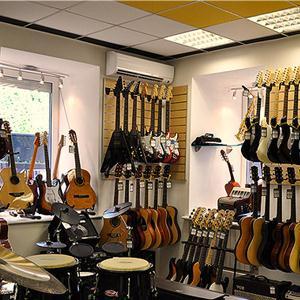 Музыкальные магазины Туголесского Бора
