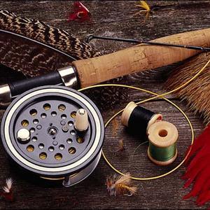 Охотничьи и рыболовные магазины Туголесского Бора