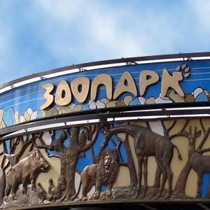 Зоопарки Туголесского Бора